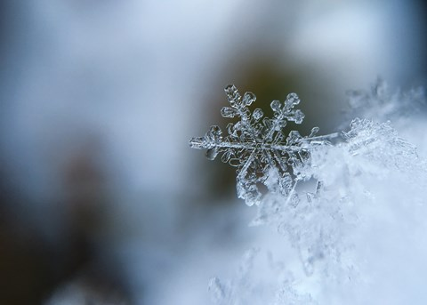 Details on a snowflake
